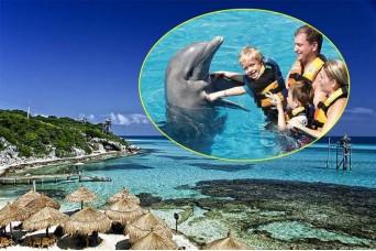 Eco-Parque Garrafón Isla Mujeres & Nado con Delfines