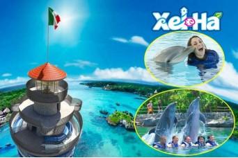 Tour Xel-Ha Todo Incluido & Nado con Delfines